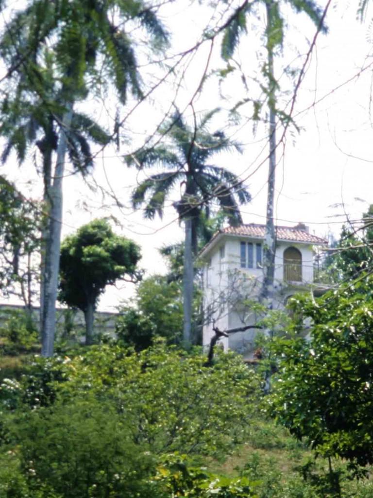 Finca Vigía; Kuba, April 1983 Photo by W. Stock
